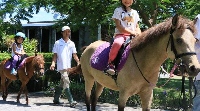 Optimum Bali - News - Horse Riding Experience