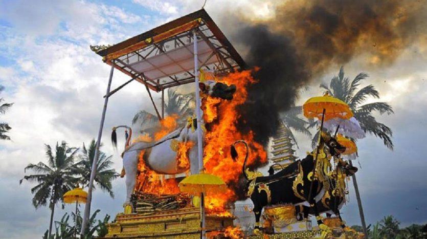 Optimum Bali - News - Ngaben